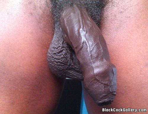 Black male strippers cfnm