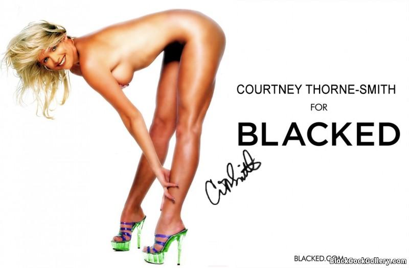 208106 - Black Cock Gallery