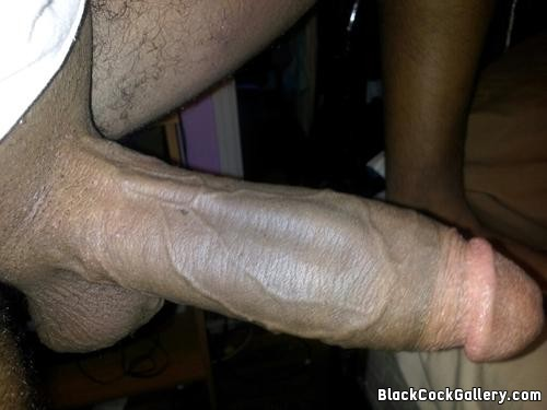 Big Black Cock Gallery 74