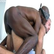 51346 - Black Cock Gallery