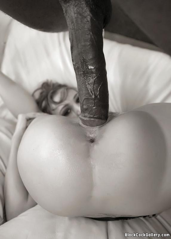 big dick going in pussy