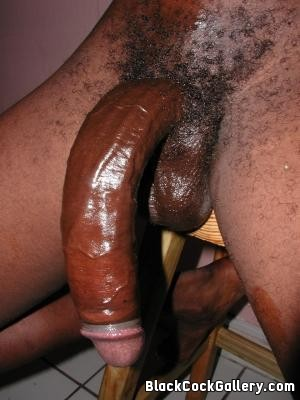 big black dick head Ms.